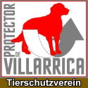 Villarrica Protector