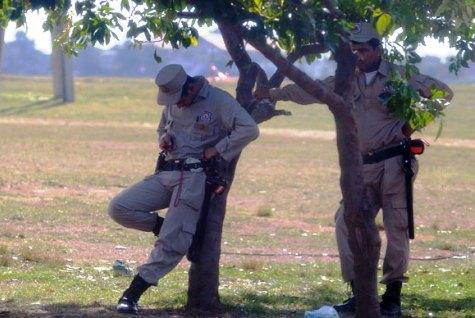 Polizisten, die teilweise unter vollem Körpereinsatz die Bäume am Umfallen hindern (UH)