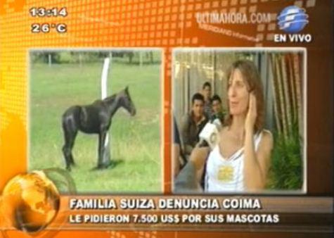 Eines der Pferde am Flughafen sowie Lisa Metsch-Dömel (UH)