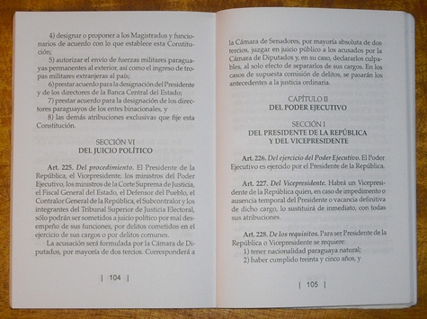 Art. 225 Verfassung (Jan Päßler)