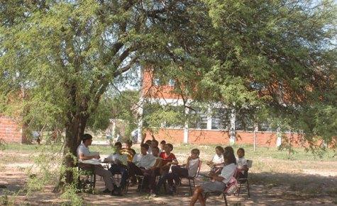 Schüler unter einem Baum (UH)