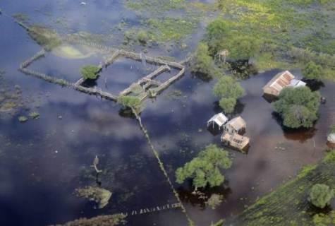 Milch- und Fleischpreiserhöhung wegen Überschwemmung im Chaco erwartet
