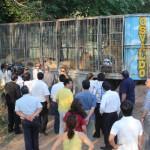 Große Sammelaktion für die gestrandeten Raubtiere im Botanischen Garten von Asunción