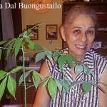 Baumaktion in der italienischen Pizzeria Dal Buongustailo