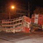 Rindertransport verunfallt in Asunción
