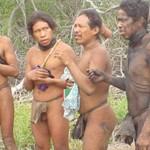 Studie: Weltweit höchste Abholzungsrate auf dem Land von unkontaktiertem Volk
