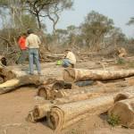 Chaco – Land der Indianer