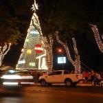 Weihnachtsbaum ist schon aufgestellt