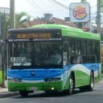 Neue, klimatisierte Busse für Asunción