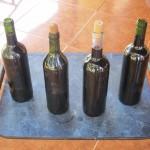 Hauswein als Nebenerwerb