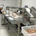 Fischproduktion steigt