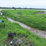"""Wasser """"reinigt"""" Mülldeponie von Asunción"""