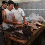 Fisch zunehmend gefragt