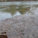 Tebicuarymí Fluss verseucht
