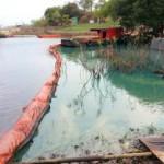Historische Strafe für Umweltvergehen