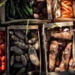 Nahrungsmittel-Abhängigkeit