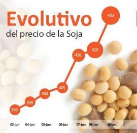 Preise für Sojabohnen steigen stark an