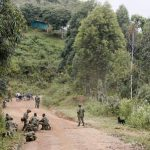 Kooperation zwischen FARC und EPP?