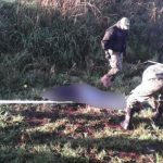 Hinrichtung in Concepción: Besteht eine Verbindung zur EPP?