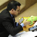 Ein Stofftier sorgt für Aufregung im Senat