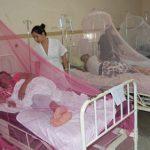 Impfung gegen Dengue erhältlich