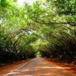 Wie attraktiv ist Paraguay als Auswanderungsland?