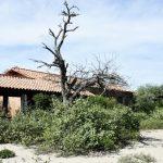 Die Geisterstadt im Chaco
