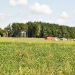 Landwirtschaftsschule prangert Tatenlosigkeit der Staatsanwaltschaft an