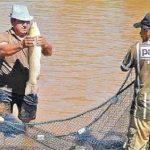 Immer mehr Fischzüchter in Paraguay