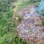 Morombi Reservat könnte zur Drogenhandel Route werden