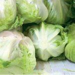 Salat erzielt Rekordpreise
