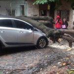Sachschäden der ANDE in Höhe von 700 Milliarden Guaranies