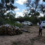 Abholzung im Chaco ohne Folgen