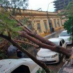 Der Staat muss bei den Auswirkungen des Klimawandels eingreifen