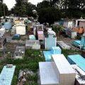 20 Prozent weniger Tote Dank der Pandemie