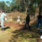 Ein Friedhof im Mittelpunkt des Interesses