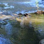 Kristallklares Wasser und eine atemberaubende Umgebung