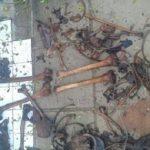 Skelettreste im Müllsack gefunden