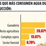 Fleisch- und Sojaproduktion brauchen immer mehr Wasser