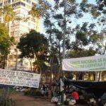 Landbesetzungen: Besorgnis über die ansteigende Rechtsunsicherheit in Paraguay