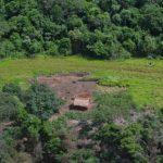 Landlose dringen in Naturschutzgebiet ein