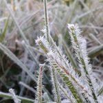 Heute beginnt der Winter