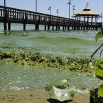 Ein weiterer Versuch den Ypacarai See zu retten