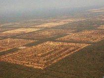 Der Chaco, ein fragiles Gebiet, das nicht vom Staat geschützt wird