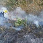 Treibstoffressourcen der Feuerwehr erschöpft