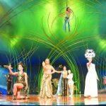 Ein Zirkus vernebelt die Stadträte