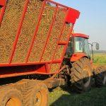 Zuckerrohranbau im Bezirk Paso Yobai dürfte sich nächstes Jahr verdoppeln