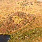 Seam deckt massive Abholzung auf