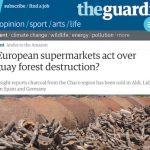 NGO's wollen Holzkohleproduktion im Chaco nur schlechtreden