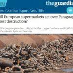 Import von paraguayischer Kohle ausgesetzt